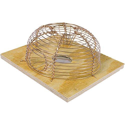 SWISSINNO SOLUTIONS Classique Cage Souris Rond, Beige/Argent, 15 x 8 x 15 cm