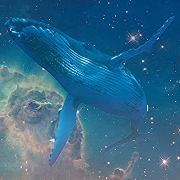 Loneliest Whale