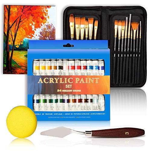 Juego de pinturas acrílicas – 24 x pigmentos – 15 x pin