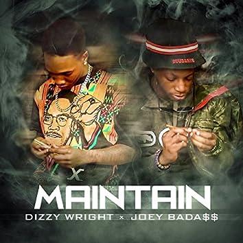 Maintain (feat. Joey Bada$$) - Single