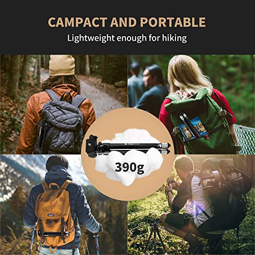 Fotopro Phone Tripod Stand, 40 inches Lightweight Travel Tripod for iPhone with Remote Control, Aluminum Compact Camera Tripod for Nikon, Samsung, Huawei, Vlog Tripod for Tiktok YouTube