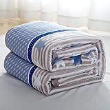 YJJSL Manta Hogar Textiles Primavera y otoño Engrosamiento Franela Manta Siesta Aire Acondicionado Manta Toalla (Size : 100 * 140cm)