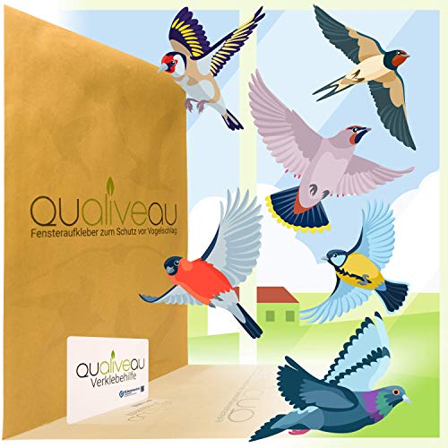 QUALIVEAU® Aufkleber zum Schutz vor Vogelschlag auf transparenter Milchglasfolie, 6 regionale Vogelarten, Komplett Set mit Verklebehilfe