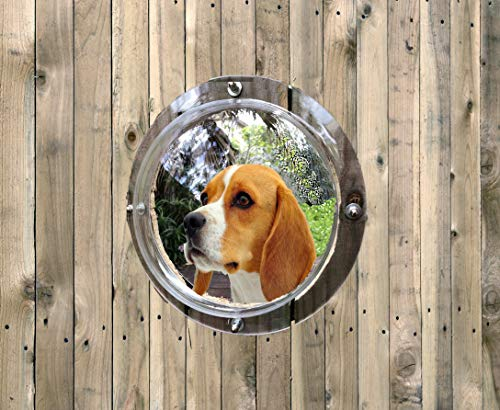 Pet Fence Dome Peek Bubble Window - for Dogs See...