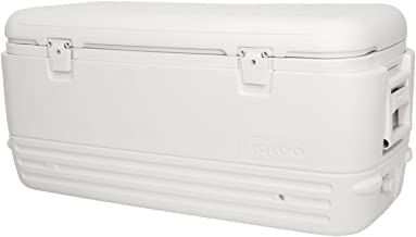 Igloo Polar Cooler Family