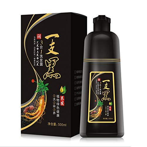 Fanville Hair Dye Color Shampoo Beauty Nourishing Long Lasting Care for Men Women Home Salon Simple to Use