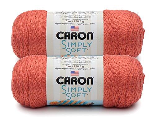 Bulk Buy: Caron Simply Soft Yarn Solids (2-Pack) (Persimmon)