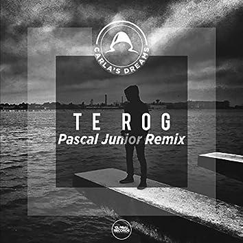 Te Rog (Pascal Junior Remix)