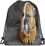 surce Arrodillarse Bulldog Inglés Bolsa de Gimnasio Bolsa de cordón Unisex Saco de cincho Ligero Duradero Gran Capacidad para Deportes Viajar Senderismo Acampar