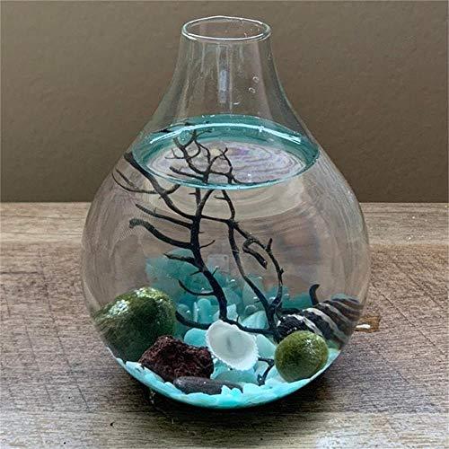Marimo Moosball Terrarium Kit Teardrop Glas Terrarium Zen Terrarium Moos Ball Aquarium DIY Terrarium Container (Blau)
