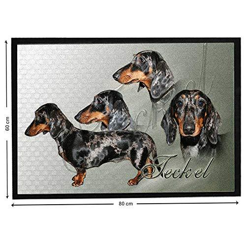 Pets-easy Teckel Arlequin sobre felpudo de perro de caza