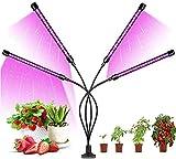 AUA Lampe de Plante 80 LED 40W Lampe de Croissance à 4 Têtes 360° Spectre Complet LED Grow Light, col de Cygne Réglable, 3 Modes de Luminosité, 9 Niveaux Dimmables et 3 Modes de Minuterie (3/9/12H)
