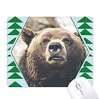 陸生生物が野生動物のクマ オフィスグリーン松のゴムマウスパッド