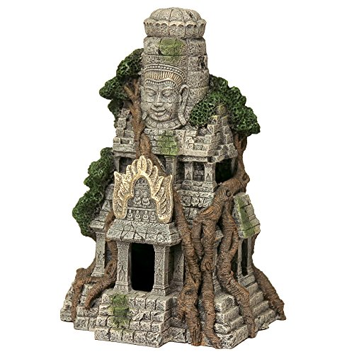 Rosewood Templo de Camboya ruinas Acuario Decor