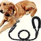 Zoom IMG-2 fhodigogozd guinzaglio per cani 1