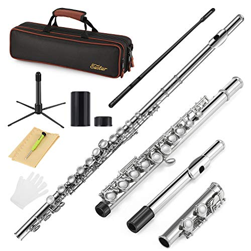 Eastar C Flöte 16 geschlossen Löcher Querflöte Instrument Vernickelt Flöte Anfänger Set mit Flötenständer Koffer Reinigungstuch (EFL-1)
