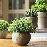 Jobary Set mit 3 künstlichen grünen Gras Pflanzen in grauen Töpfen, kleine dekorative Faux Plastik Pflanzen, ideal für Heim Büro Bad Küche und Outdoor Dekoration - 2