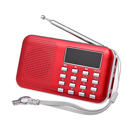 Mini Radio Digitale Portatile FM, Docooler Radiolina Tascabile Altoparlanti con Display LCD Supporto Lettore U Disco e Micro SD Card AUX MP3 Support USB Drive TF Card AUX-in Earphone-out