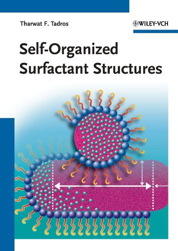Self-Organized Surfactant Structures (Topics in Colloid and Interface Science (Vch)) (English Edition)