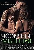 Moonshine & Mistletoe (Black Rebel Devils MC Book 1)