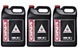 Honda GN4 4 Stroke 10W40 for ATV/Motorcycles - Gallon (Case of 3) 08C35-A141L01