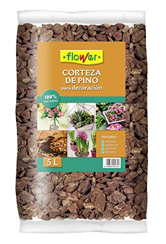 Flower 90274 Corteza de Pino Decorativa, 15/30, Marrón, 30x12x56 cm 🔥