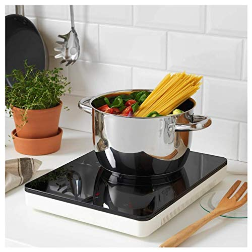IKEA Portable Induction Cooktop Review