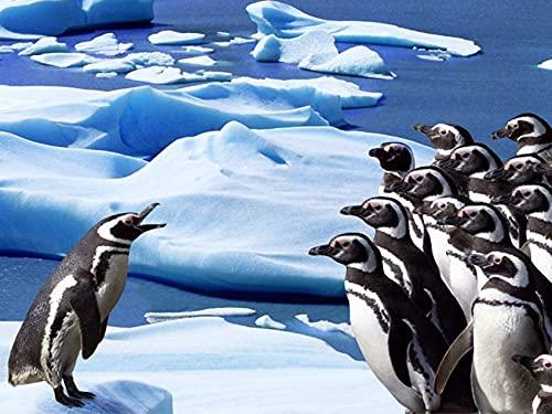 5D DIY pingüino punto de cruz mosaico diamante bordado Animal decoración del hogar diamante pintura A4 30x40 cm