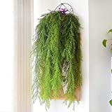 4plantas de plástico verde artificial, de Yunhigh, tallos artificiales decorativos de coníferas, para exteriores e interiores