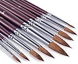 Fuumuui Pinceles de Acuarela - Juego de Pinceles de Pintura con Detalle Redondo de Artista, Pelo de Marta, 9 tamaños Diferentes para Acuarelas, acrílicos, tintas, Gouache, Pintura al óleo y témpera