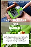 Insulin Plant for Diabetes: How to use this wonder plant to cure diabetes naturally includes DIY extraction method, dosage and recipes to mange blood sugar and weight loss