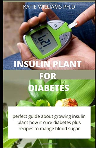 Insulin Plant for Diabetes: How to use...