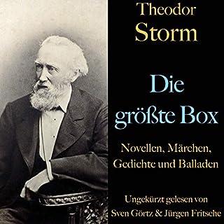 Theodor Storm. Die größte Box Titelbild