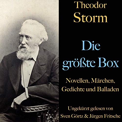 Theodor Storm. Die größte Box cover art