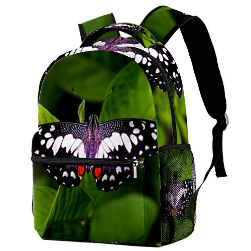 Green Butterfly Backpack for Teens School Book Bags Travel Casual Daypack