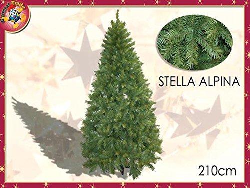 ALBERO STELLA ALPINA 2,10mt 1099 422137