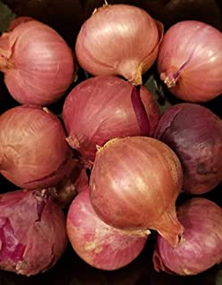 Fresh Shallots 2 Lbs. Produce of USA