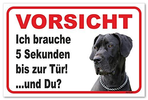 AdriLeo Schild - Vorsicht Deutsche Dogge - 5 Sekunden - (20x30cm) / Graues Fell Achtung Hund Wachhund