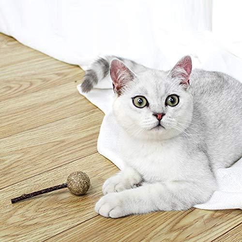 Momangel Lollipop Forma Gato Bola de Gato Juguete Gatito Limpieza Dientes Silvervine Stick Cartoon Durable Pet Toys Entrenamiento Interactivo Jugar