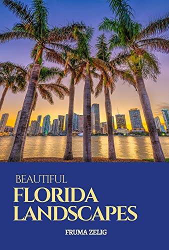 Beautiful Florida Landscapes: An Adult Picture Book and Nature City Travel Photography Images with NO Text or Words for Seniors, The Elderly, Dementia ... For Easy Relaxation (English Edition)