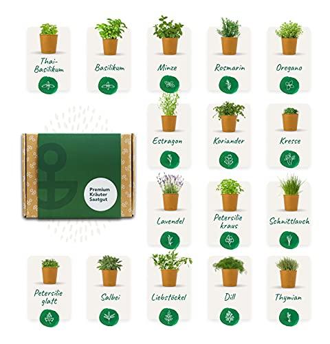 Bloomify® Premium Kräuter Samen Set, 16 Sorten Küchenkräuter, hohe Keimungsrate | nachhaltige Küchenkräuter Anzucht inkl. Pflanzenstecker & Anleitung | Kräuterset für Küche, Balkon & Garten