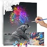 Bougimal Malen Nach Zahlen Erwachsene Tiere ohne Rahmen inklusive Pinsel und Acrylfarben - 40 x 50 cm, Elefant -