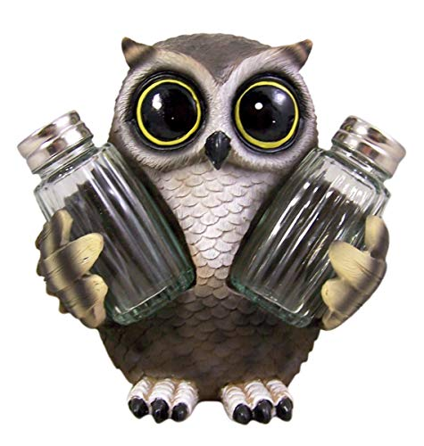 Wise Owl Cast Resin Salt and Pepper Shaker Holder, 6 Inch (Shakers Included)