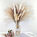 Total 75Pcs,Natural Dried Pampas Grass Decor 17Inch,15Pcs White Pampas ,15Pcs Brown Pampas ,15Pcs Fluffy Bunny Tails Pampas Grass, 30Pcs Reed Grass, for Flower Arrangements Boho Wedding Home Decor