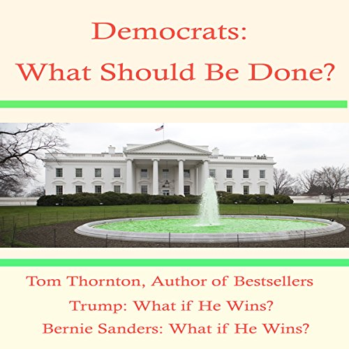 Democrats What Should Be Done audiobook cover art