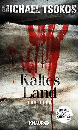 Kaltes Land: Ein Fall für Sabine Yao (Eiskalte Thriller)
