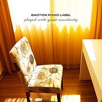 The Sunshine Down The Window