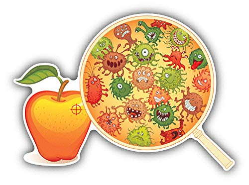 Tamengi Fruit Microscope Bacteriën Auto Bumper Sticker Decal 5