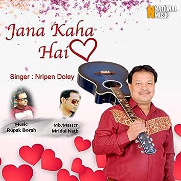 Jana Kaha Hai - Single