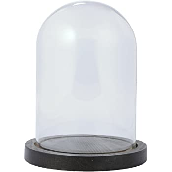 東京堂 花器 ガラスドーム&ウッドM   GG510209